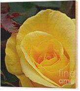 Bright Yellow Rose Wood Print