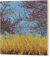 Brightly Comes The Spring Wood Print