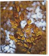 Brilliant Leaves Wood Print