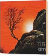 Brimham Sunset Wood Print