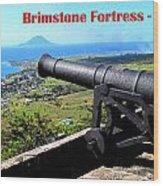 Brimstone Fortress Poster Wood Print
