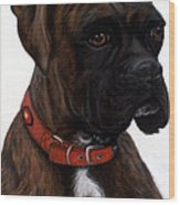 Brindle Boxer Wood Print by Michelle Harrington
