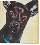 Brindle Chihuahua Ears Wood Print