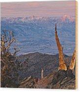Bristlecone Bishop Sunrise Wood Print