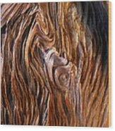 Bristlecone Pine Grain Wood Print