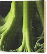 Broccoli Abstract Wood Print