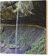 Broke Leg Falls Kentucky Wood Print