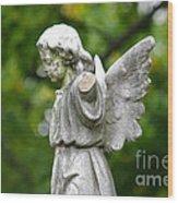 Broken Angel Wood Print