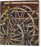 Broken Spokes Wood Print