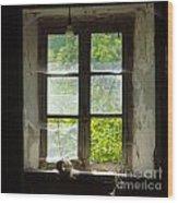 Broken Window. Wood Print