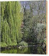 Brompton Beck Wood Print