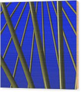 Bronze Sunlight Wood Print