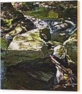 Brook Fall 31 Wood Print