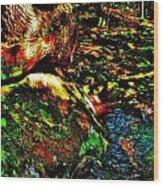 Brook Texture 58 Wood Print