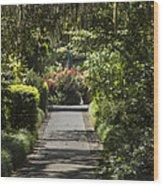 Brookgreen Gardens Path Wood Print