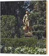 Brookgreen Golden Statue Wood Print