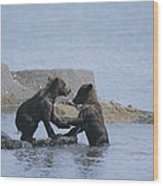 Brown Bear Cubs Playing On A Rocky Wood Print