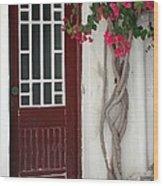 Brown Door In Greece Wood Print