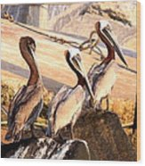 Brown Pelican - Holding Things Together Wood Print