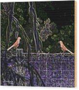 Brown Thrush Wood Print