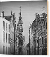Brussels In Black And White Wood Print