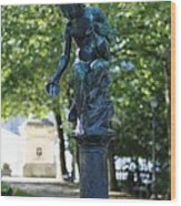 Brussels Royal Garden Fountain Wood Print