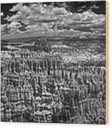 Bryce Canyon - Black And White Wood Print
