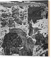 Bryce Canyon Arch - Black And White Wood Print