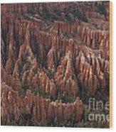 Bryce Canyon At Dusk Wood Print