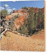 Bryce Canyon Canyon Wood Print