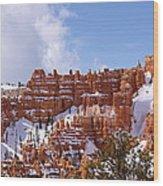 Bryce Canyon Castles Wood Print