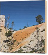 Bryce Canyon Character Wood Print