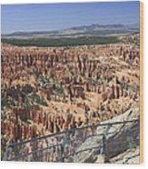 Bryce Point 5451 Wood Print