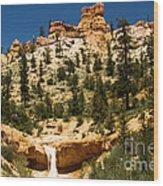 Bryce Water Canyon Wood Print