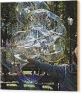 Bubble Blowr Of Central Park Wood Print