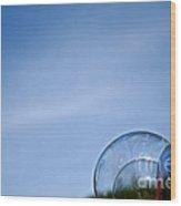 Bubble Building Wood Print
