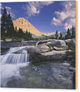 Bubbs Creek Wood Print by Buck Forester