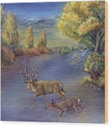 Buck And Doe Crossing River Wood Print