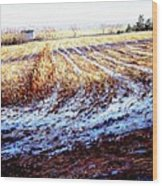 Bucks County Late Winter Fields Wood Print