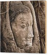 Buddha Head Strangled By The Roots  Wood Print