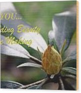 Budding Beauty Wood Print
