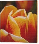 Budding Flower Wood Print