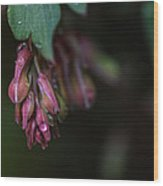 Budding Hearts Wood Print