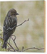 Budding Spring Song Wood Print