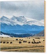Buffalo Herd Painterly Wood Print