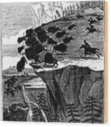 Buffalo Hunt, 1834 Wood Print