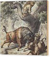 Buffalo & Lynx Wood Print