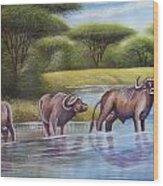 Buffalooes Watering Wood Print