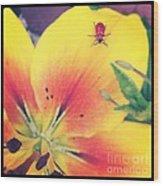 Bug On Lily Wood Print