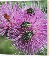 Bugfest Wood Print